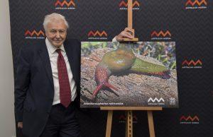 Sir David Attenborough Snail
